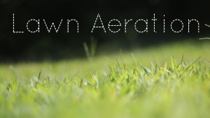 Lawn Aeration lawn care service for connecticut