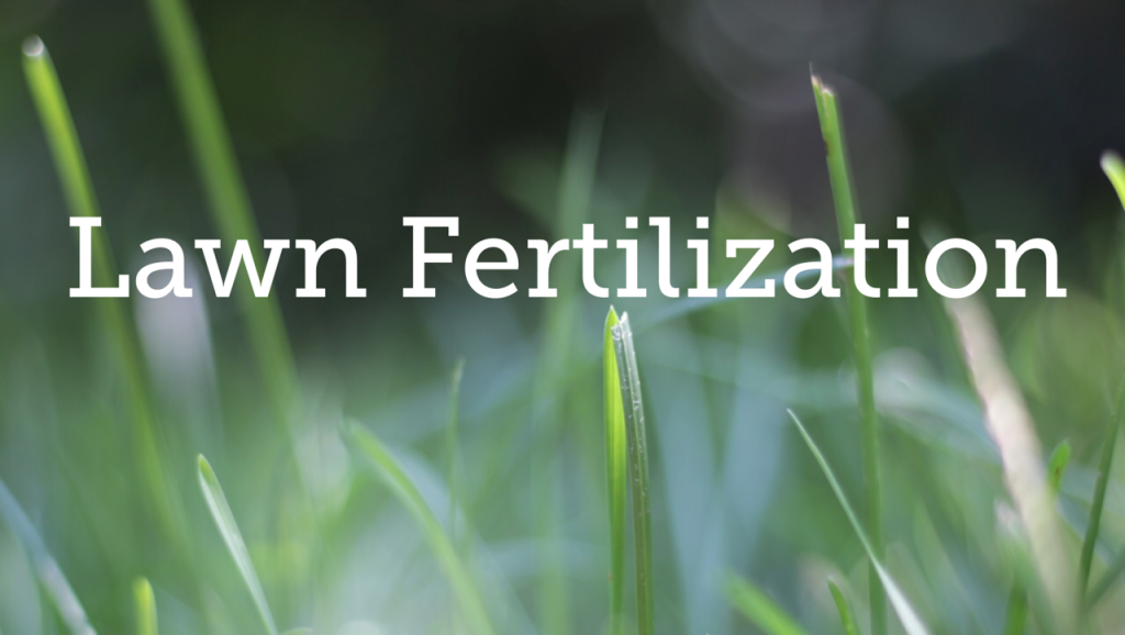 Lawn Fertilization Service serving Fairfield, Westport, Weston, New Canaan and all of Fairfield County, Connecticut.